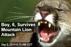 Boy, 6, Survives Mountain Lion Attack