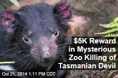 $5K Reward in Mysterious Zoo Killing of Tasmanian Devil