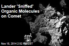 Lander 'Sniffed' Organic Molecules on Comet