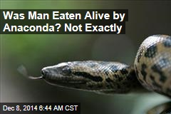 Eaten Alive Guy Needs Rescue From Anaconda