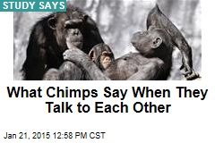What Chimps Say When They Talk to Each Other