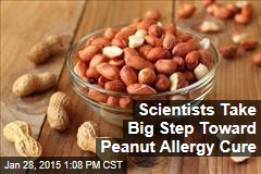 Scientists Take Big Step Toward Peanut Allergy Cure