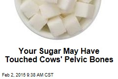 Your Sugar May Have Touched Cows' Pelvic Bones