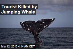 Jumping Whale Kills Whale Watcher