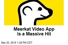 Meerkat Video App Is a Massive Hit