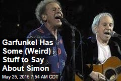 Garfunkel Has Some (Weird) Stuff to Say About Simon