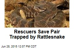 Rescuers Save Pair Trapped by Rattlesnake