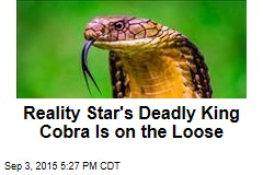 Reality Star's Deadly King Cobra is on the Loose