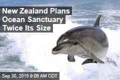New Zealand Plans Ocean Sanctuary Twice Its Size