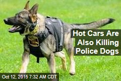 Hot Cars Are Also Killing Police Dogs