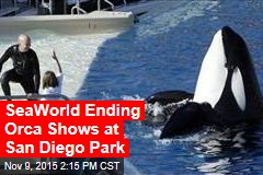 SeaWorld Ending Orca Shows at San Diego Park