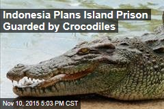Indonesia Plans Island Prison Guarded by Crocodiles