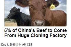 5% of China's Beef to Come From Huge Cloning Factory