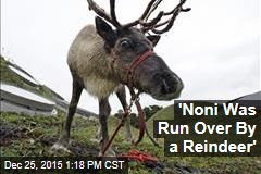 'Noni Was Run Over By a Reindeer'