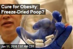 Cure for Obesity: Freeze-Dried Poop?