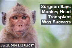 Surgeon Says Monkey Head Transplant Was Success