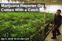 Marijuana Reporter Gig Comes With a Catch