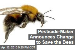 Pesticide-Maker Announces Change to Save the Bees