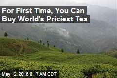 For First Time, You Can Buy World's Priciest Tea