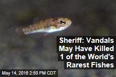 Sheriff: Vandals May Have Killed 1 of the World's Rarest Fishes