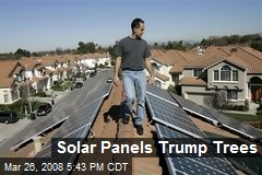 Solar Panels Trump Trees