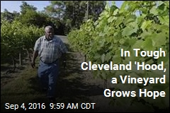 In Tough Cleveland 'Hood, a Vineyard Grows Hope