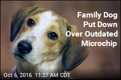 Family Dog Put Down Over Outdated Microchip