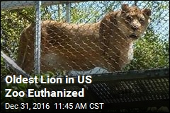 America Loses Its Oldest Lion