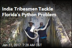 Florida Brings in Python-Catchers From India