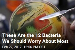 These Are the 12 Bacteria We Should Worry About Most