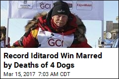 Veteran Musher Becomes Oldest, Fastest to Win Iditarod