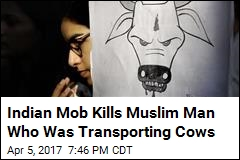 Indian Mob Kills Muslim Man Who Was Transporting Cows