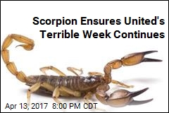 Scorpion Ensures United's Terrible Week Continues