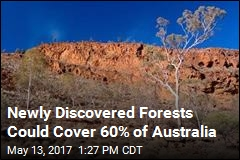 Newly Discovered Forests Could Cover 60% of Australia