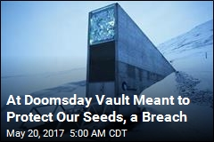 At Doomsday Vault Meant to Protect Our Seeds, a Breach