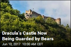 Dracula's Castle Now Being Guarded by Bears