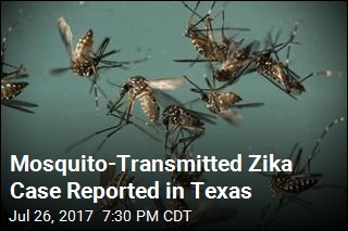 Mosquito-Transmitted Zika Case Reported in Texas
