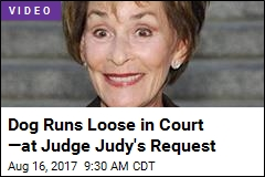 Judge Judy Lets Dog Make Legal Decision for Her