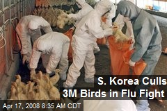 S. Korea Culls 3M Birds in Flu Fight
