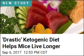 Ketogenic Diets Help Mice Live Longer, but Why?
