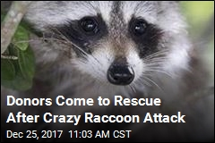 Donors Help Out Family of Infant Attacked by Raccoon