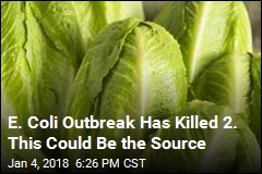 Possible Source of Deadly E. Coli Outbreak: Romaine Lettuce