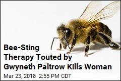 Acupuncture Using Live Bees Ends in Woman's Death