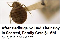 Family Gets Record Award in Bedbug Lawsuit