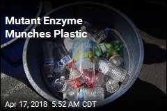Mutant Enzyme Munches Plastic