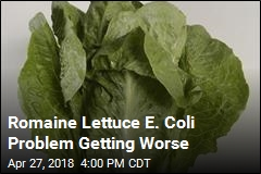 Romaine Lettuce E. Coli Problem Getting Worse