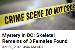Mystery in DC: Skeletal Remains of 3 Females Found