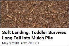 Girl Plunges Nearly 5 Floors Into Mulch Pile, Survives
