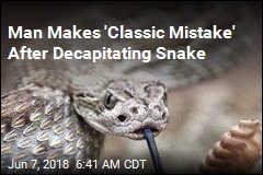 Decapitated Rattlesnake Almost Kills Texas Man