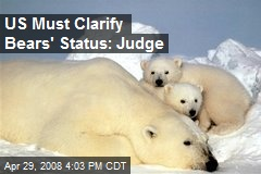 US Must Clarify Bears' Status: Judge